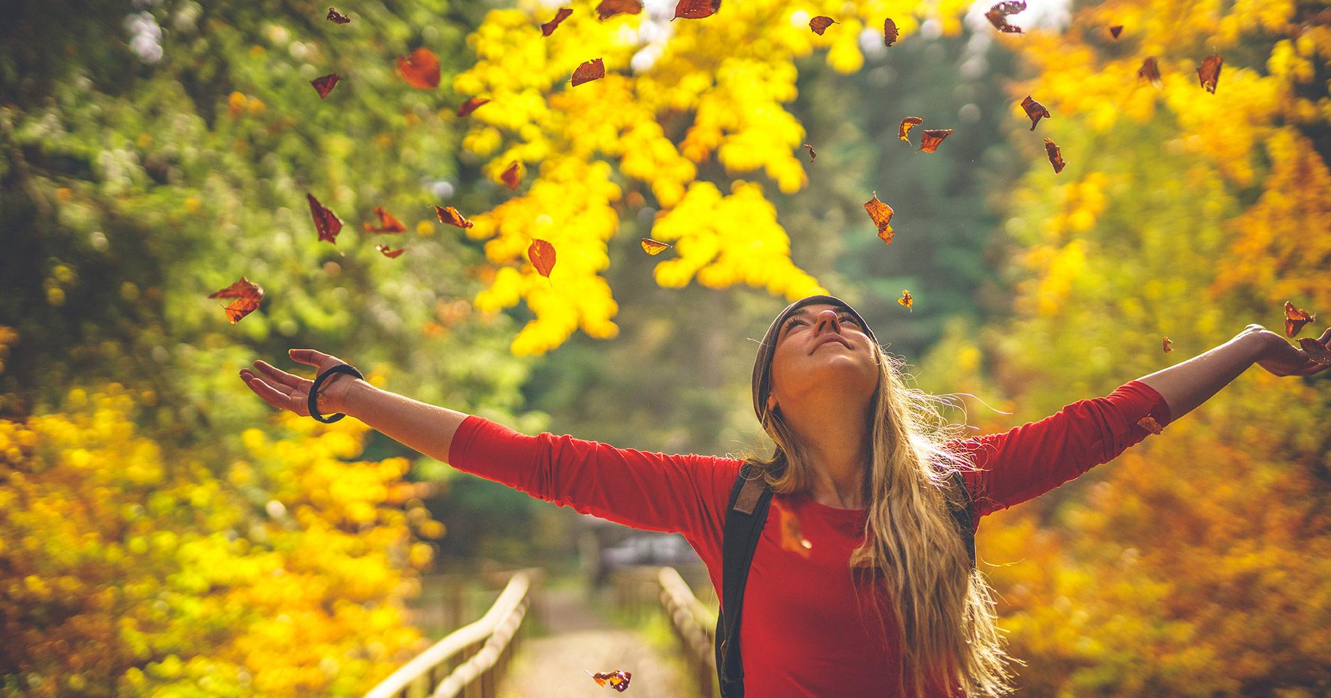 Wollen wir uns sehen? Der VALTAXA-Herbstausblick